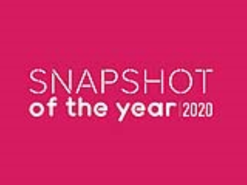 Snapshot of the Year